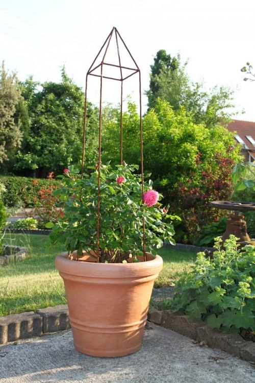 Rankobelisk aus Eisen mit Rose